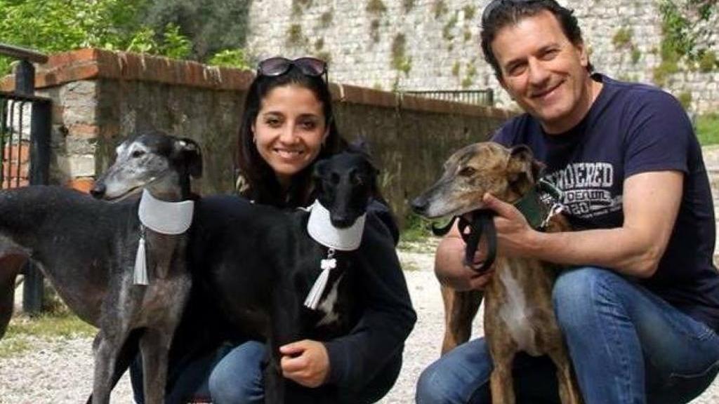 Passeggiata levriera per l 39 adozione home bresciaoggi - Palestra bagnolo mella ...