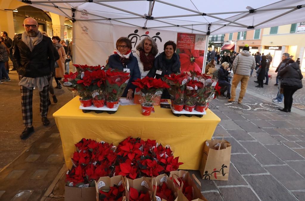 Stella Di Natale Ail 2021.Ail La Stella Di Natale In Piazza E Online Bresciaoggi